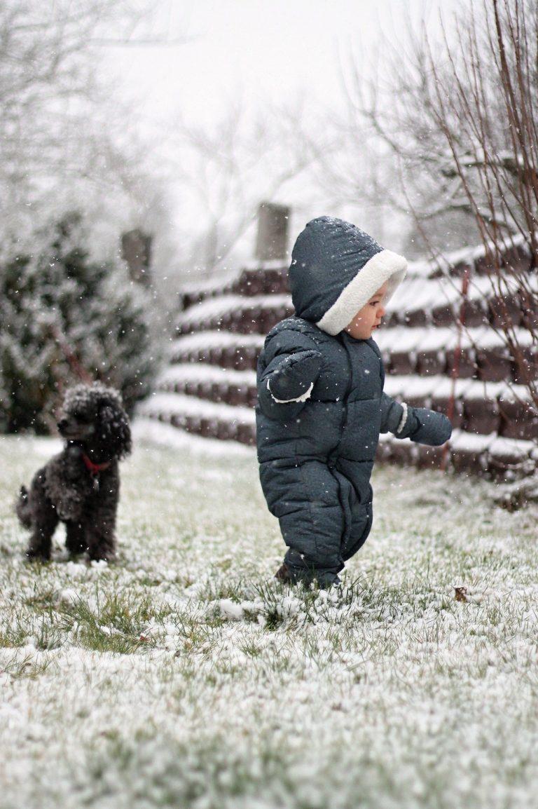bébé et chien qui jouent sous la neige